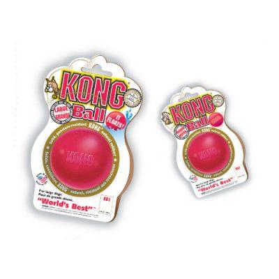 Kong Ball παιχνίδι εκπαίδευσης