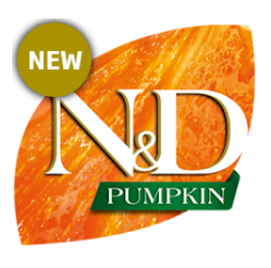 logo nd pumpkin feline new