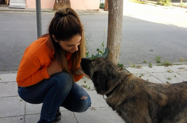 aspa human pets 2