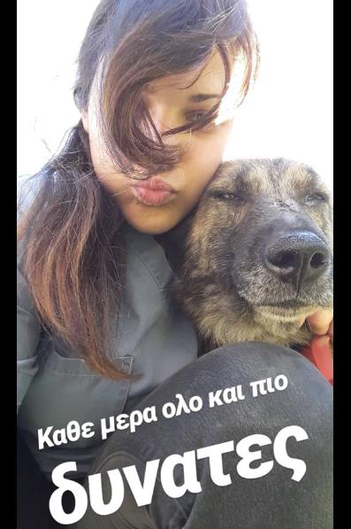 aspa human pets 6