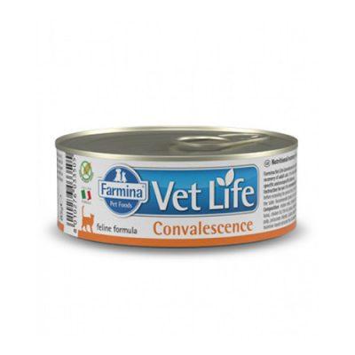 vet life Convalescence Wet Food Feline 85gr (12tem)