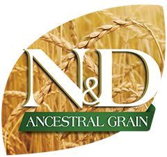 nd ancestral grain