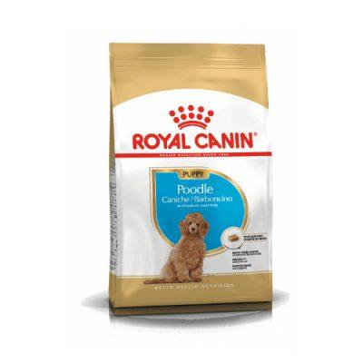 Royal Canin Poodle Junior 3Kg