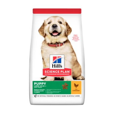 Hill's SCIENCE PLAN Puppy Large Breed Chicken 2.5kg