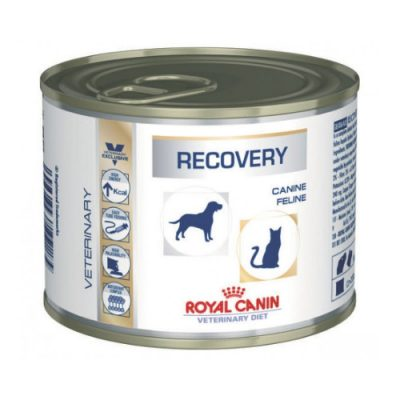 ROYAL CANIN RECOVERY CAT/DOG CAN 12X195GR