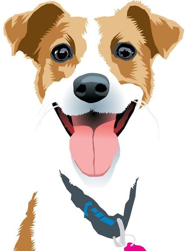 σκυλος αξεσουαρ