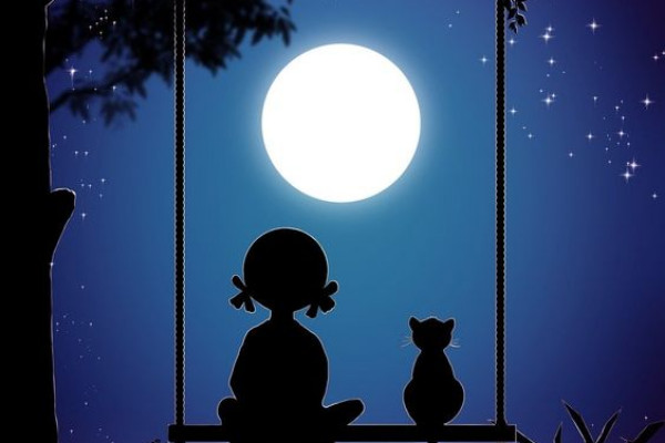Ένα Αυγουστιάτικο φεγγάρι και μια… γάτα!